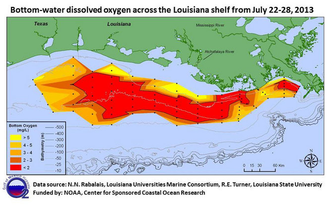 Dead Zones Throughout The Gulf Of Mexico, BP Never Cleaned Up 2010 Oil Spill 13172767 standard