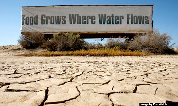 drought-signs-in-CA-3