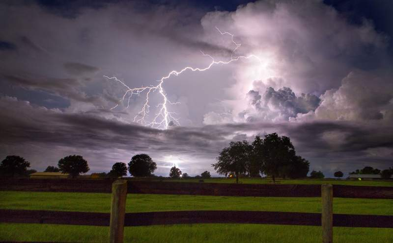 Lighting strikes a tree in the pasture of a farm along HWY 329 in rural Marion County near Ocala on August 19, 2013. Frequent afternoon and even thunderstorms often produce dangerous lighting in Florida.