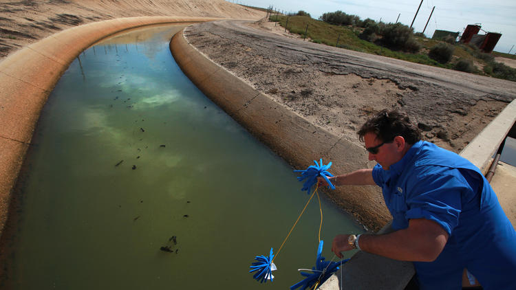 Chevron sells millions gallons of treated oil field wastewater each day to Kern County growers, who use it on some 45,000 acres of thirsty crops.